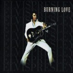 1999_burninglove