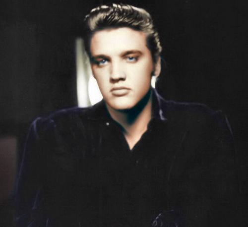 Elvis-1956-elvis-presley-9207406-500-458