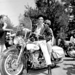 Elvis-elvis-presley-7008235-440-540