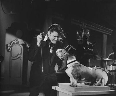 Elvis sings Hound Dog