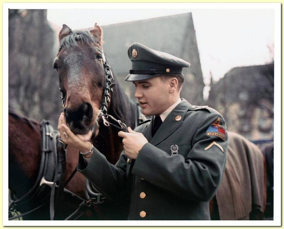 Elvis In Army with horse